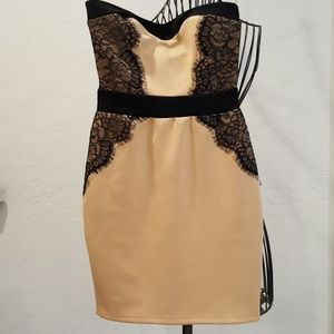 NEW Strapless Lace Dress